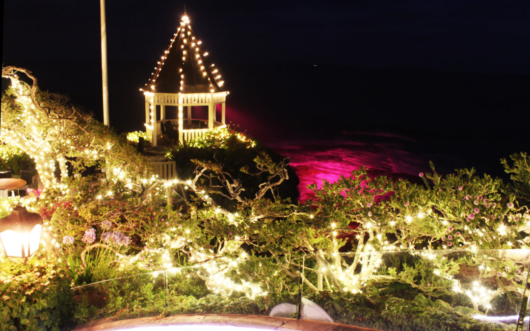 Featured Beachside Wedding Lighting by My Event Kings